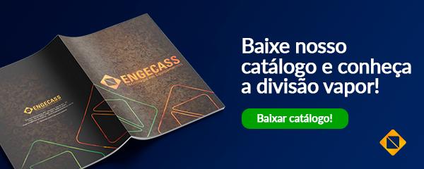 Catálogo divisão vapor da Engecass | Baixar catálogo | Engecass Vapor